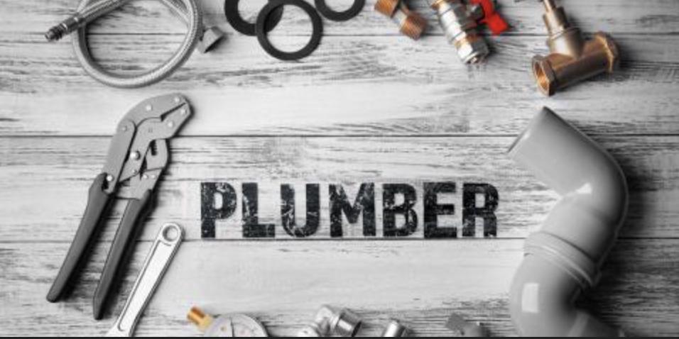, 10 Plumbing Fun Facts!