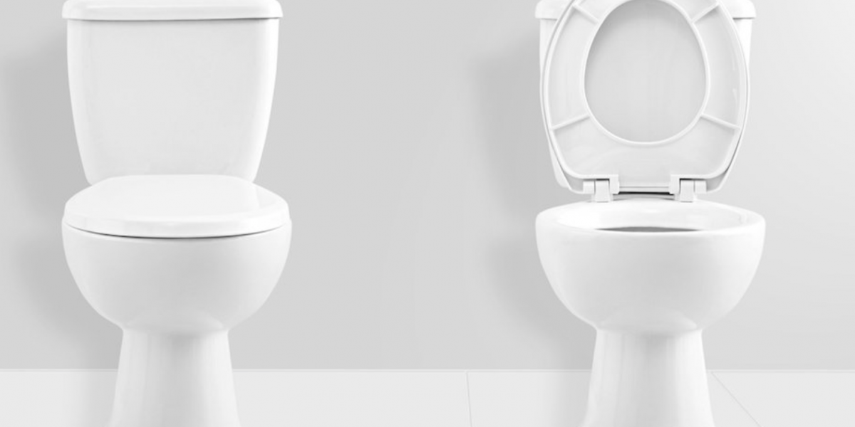 , What to look For in a toilet